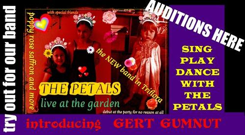 the petals audit