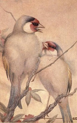 birdsbeasts00lemoiala_0070
