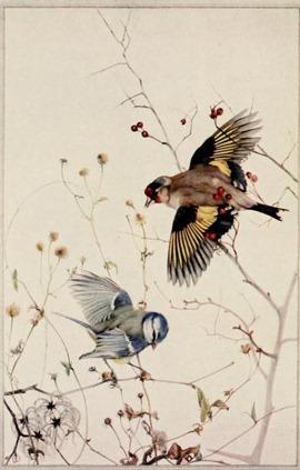 birdsintownvil00huds_0008
