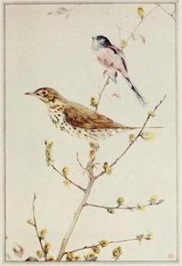 birdsintownvil00huds_0085
