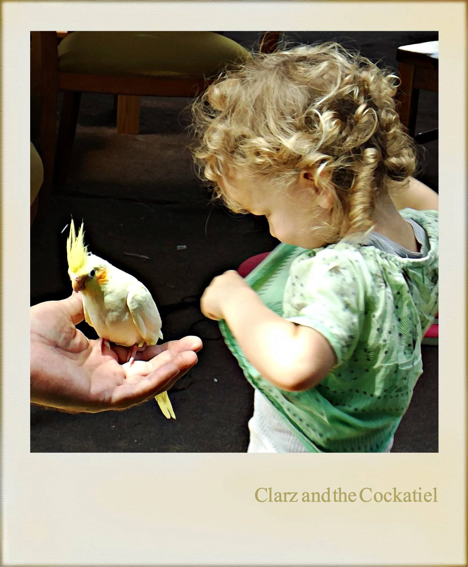 CLARA'S FIRST STORY